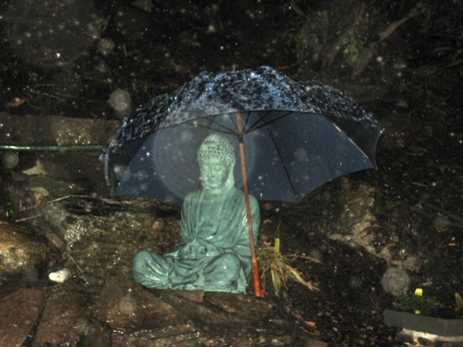 2008-0412 rainy night Buddha