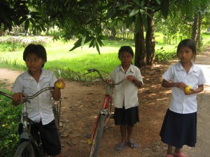 the geography and economic life in cambodia The human rights council should send food and medical aid to cambodia they  should and could do this until the economy of cambodia gets better and good.